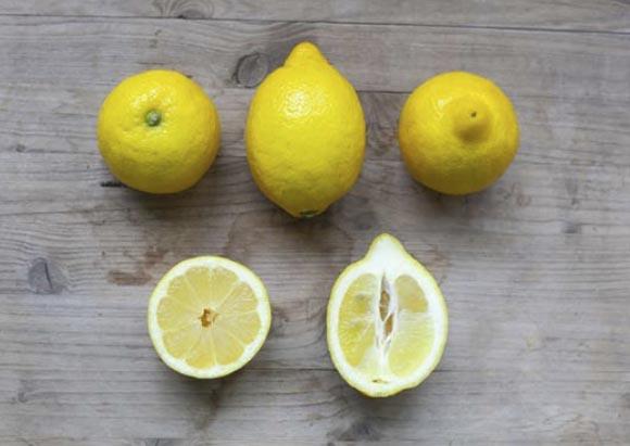 limon-fino 2
