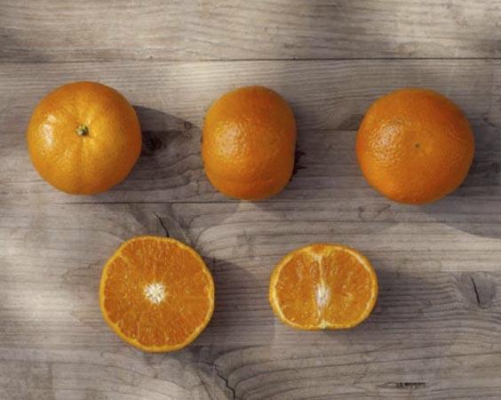 mandarina-orri 2