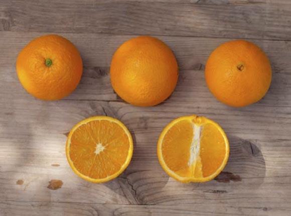 naranja-barnfield 2