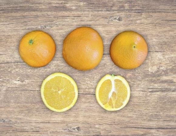 naranja-cambria 2