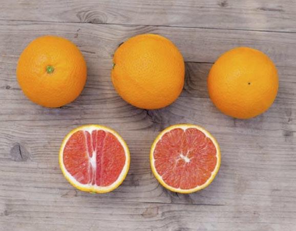 naranja-cara cara 2