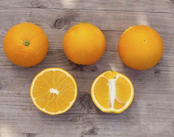 naranja-lane late 2