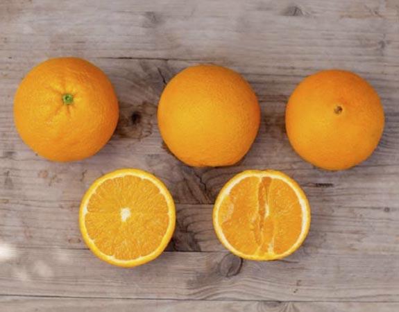 naranja-powell summer 2