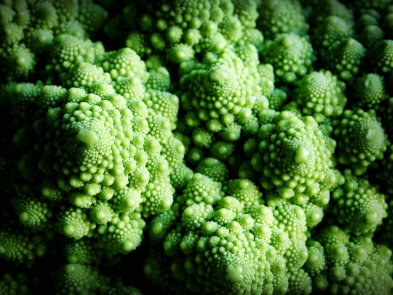 Close-up of the Romanesco. Illumination with shadows. Fractal texture